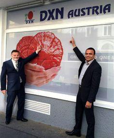 dxn austria