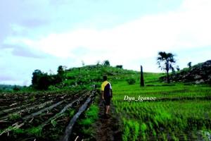 our-trekking