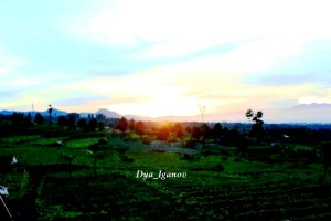 sunrise-katumiri-3