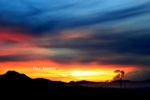 sunrise-katumiri-4
