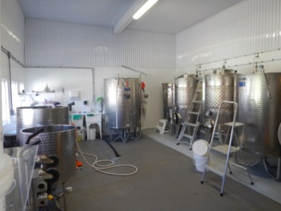 vinification/production