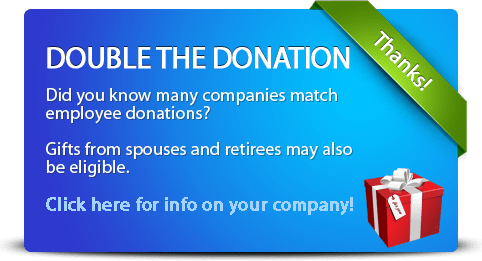 double-the-donation-detailed-blue