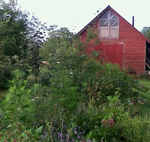 forest-garden-and-barn.jpg