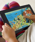 small picture of the Amazon Kindle Fire