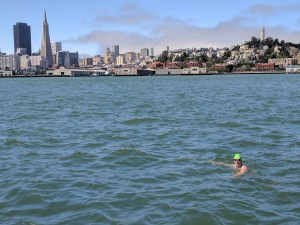 A swimmer in the water with the San Francisco skyline, Transamerica Pyramid on the left and Coit Tower on the right.