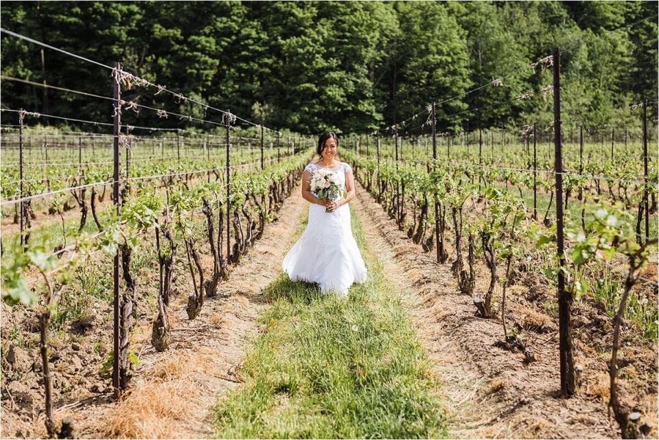 Bride walking between the rows during her wedding day at Cave Springs Vineyard in Jordan Ontario