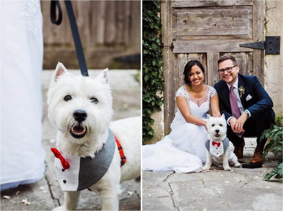 Bride and groom with their awesome dog cooper on their wedding day