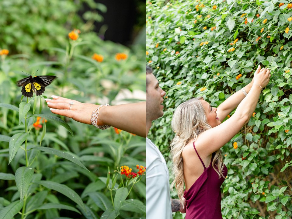 Butterfly landing on the hand of a beautiful woman
