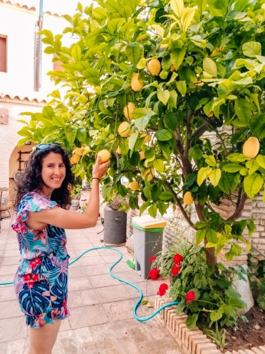 Picking a lemon off of a lemon tree at an accommodation we booked using my airbnb tips