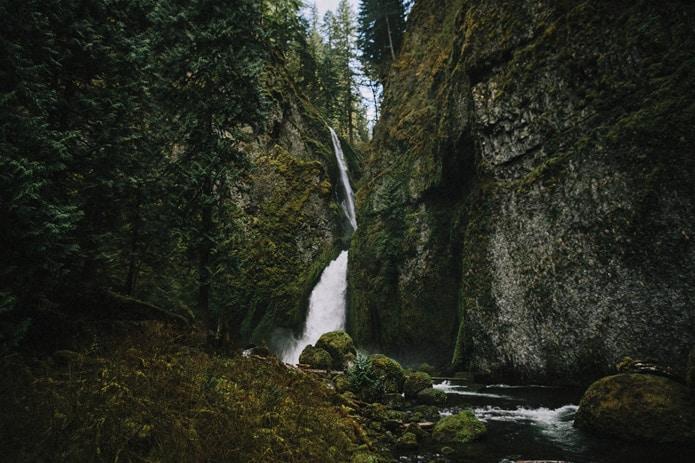 wahclella-falls-elopement-0004