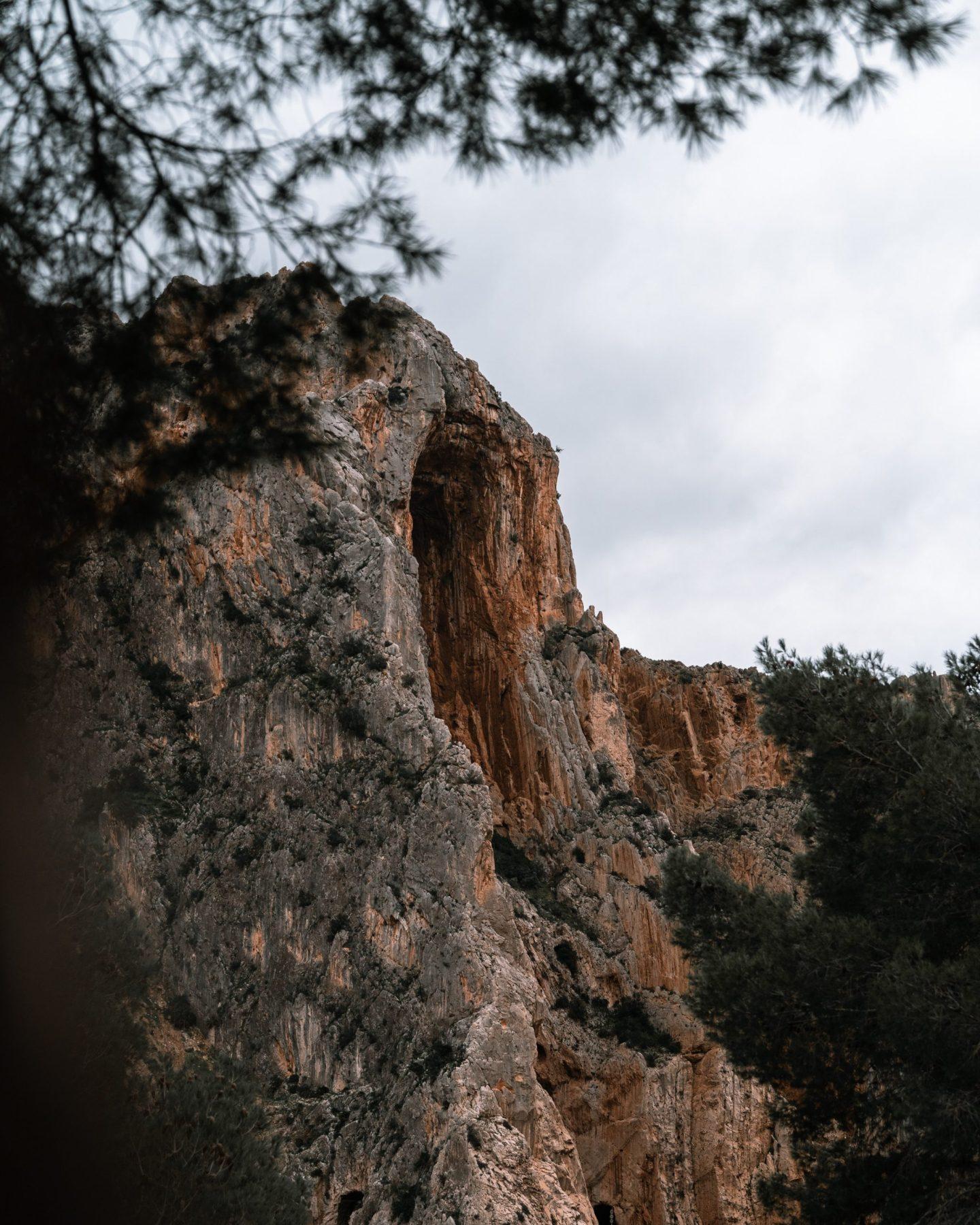 Nature in Malaga