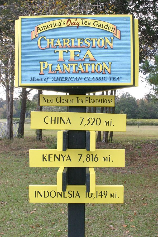 Charleston Tea Plantation sign