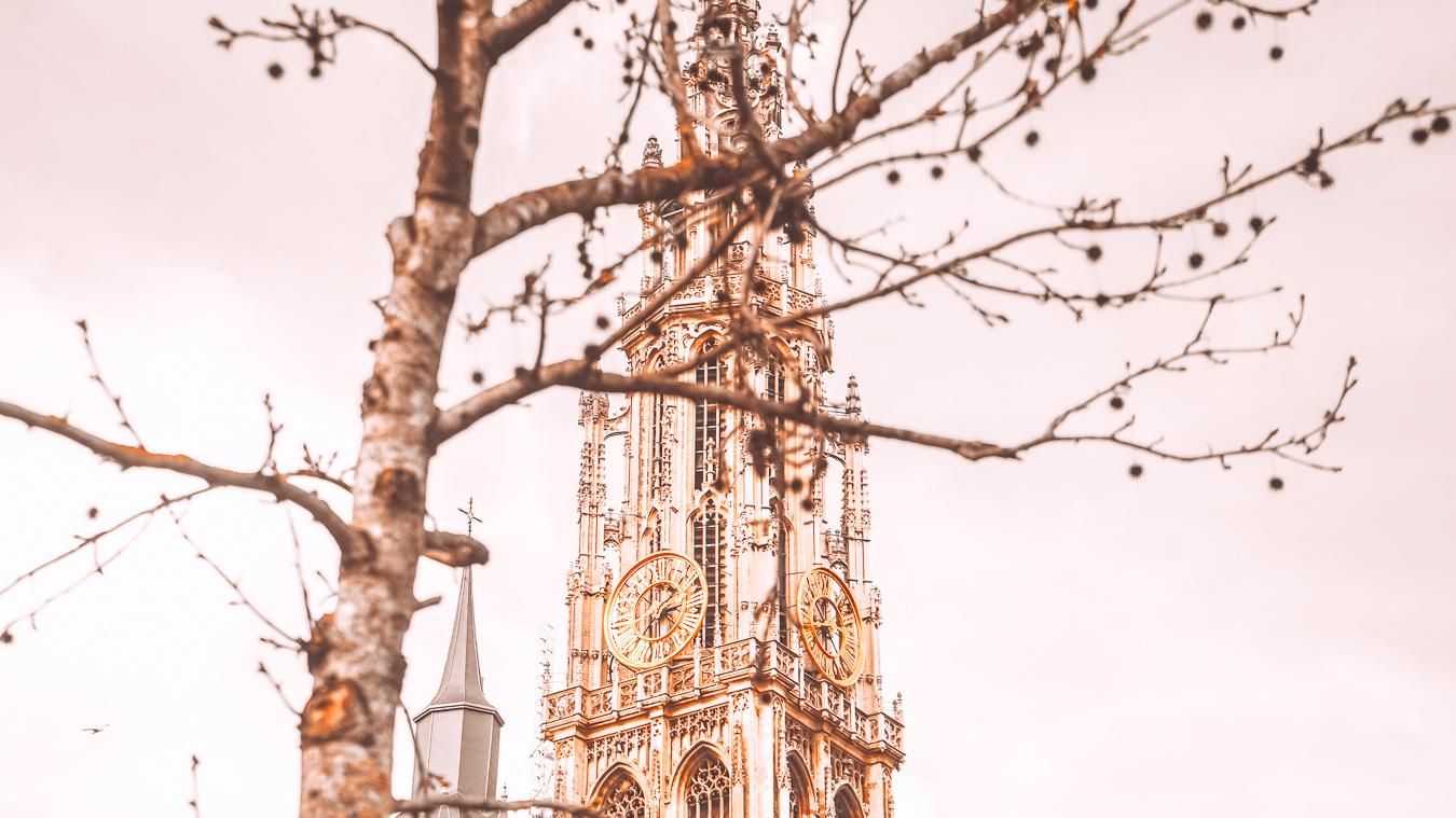 Church in autumn in Antwerp