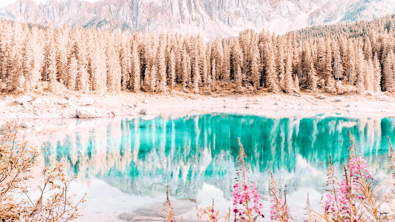 Lake Carezza and flowers