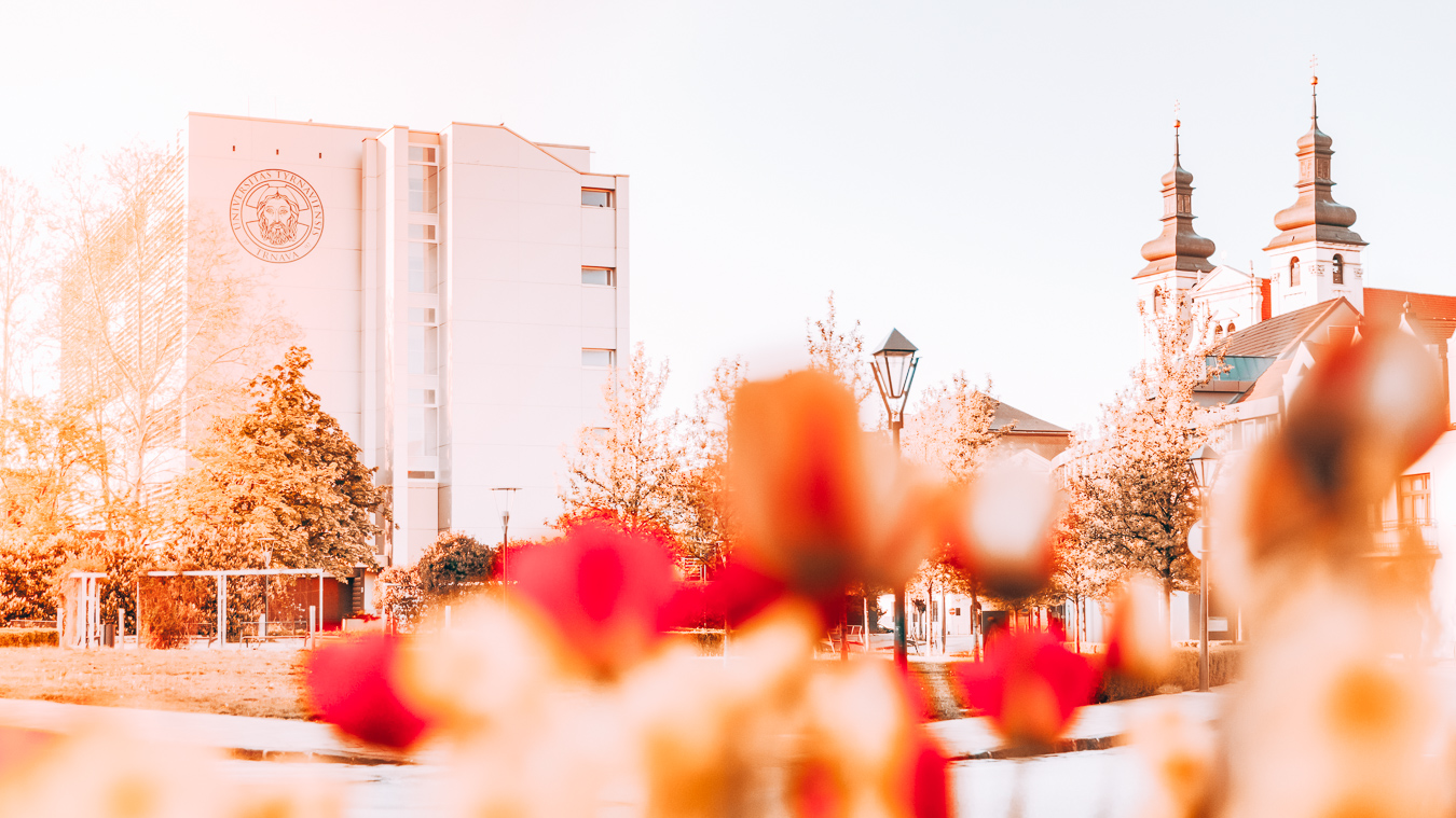 Flowers in Trnava