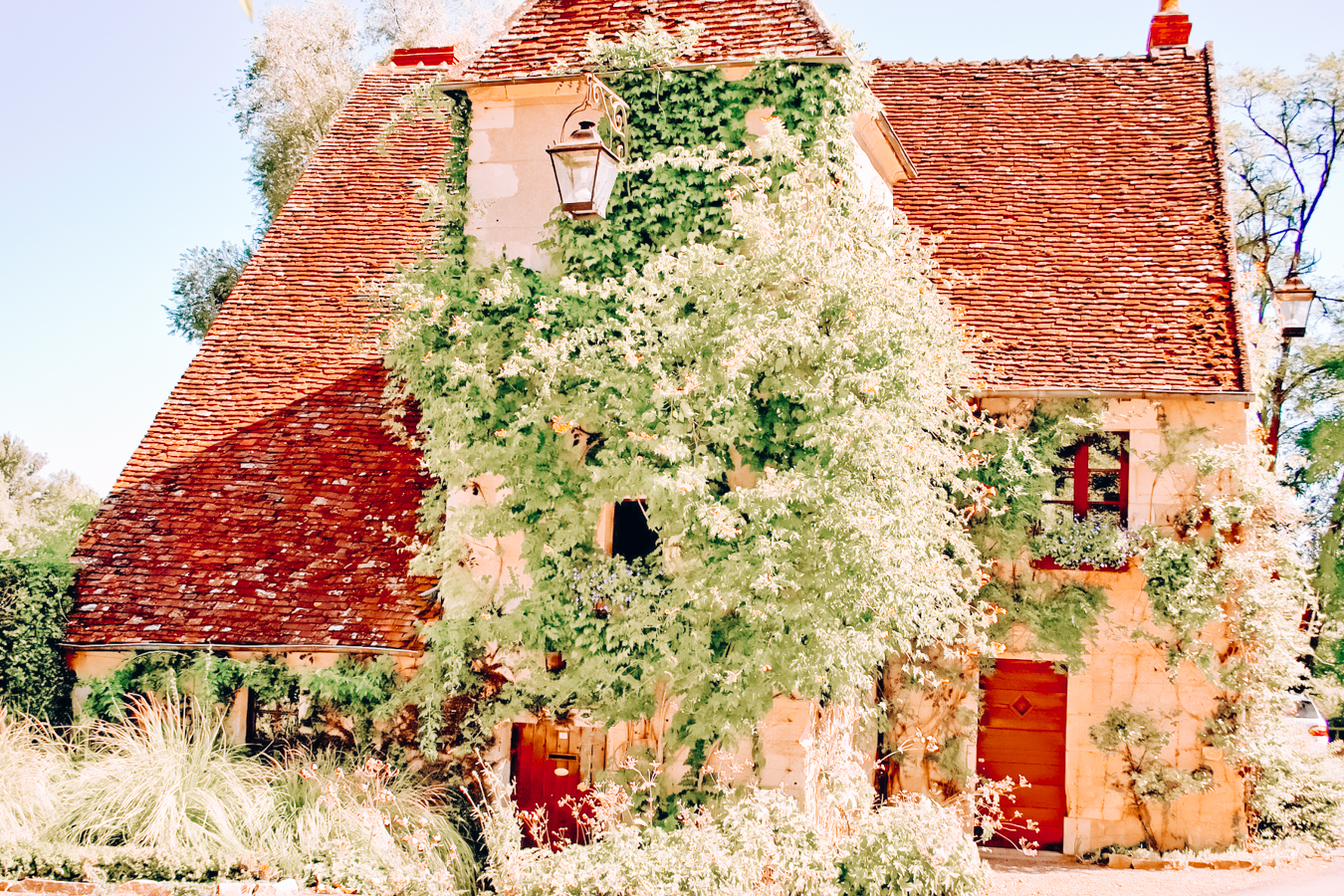 House with leaves
