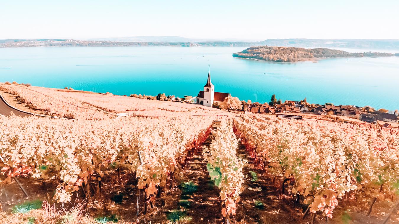 A view of Lake Biel