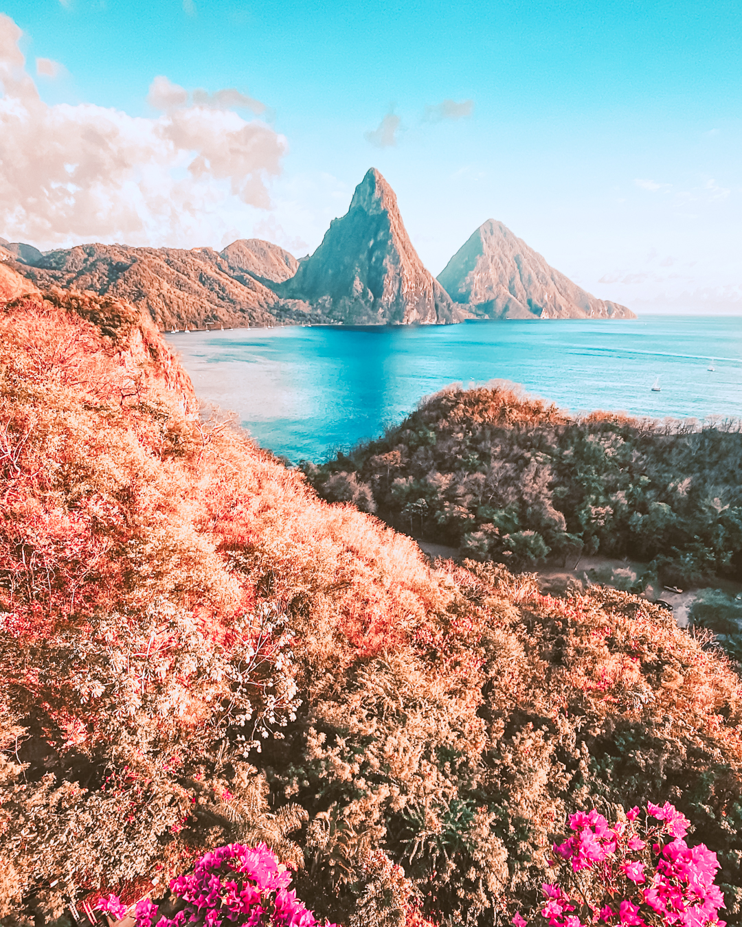 Nature in St. Lucia