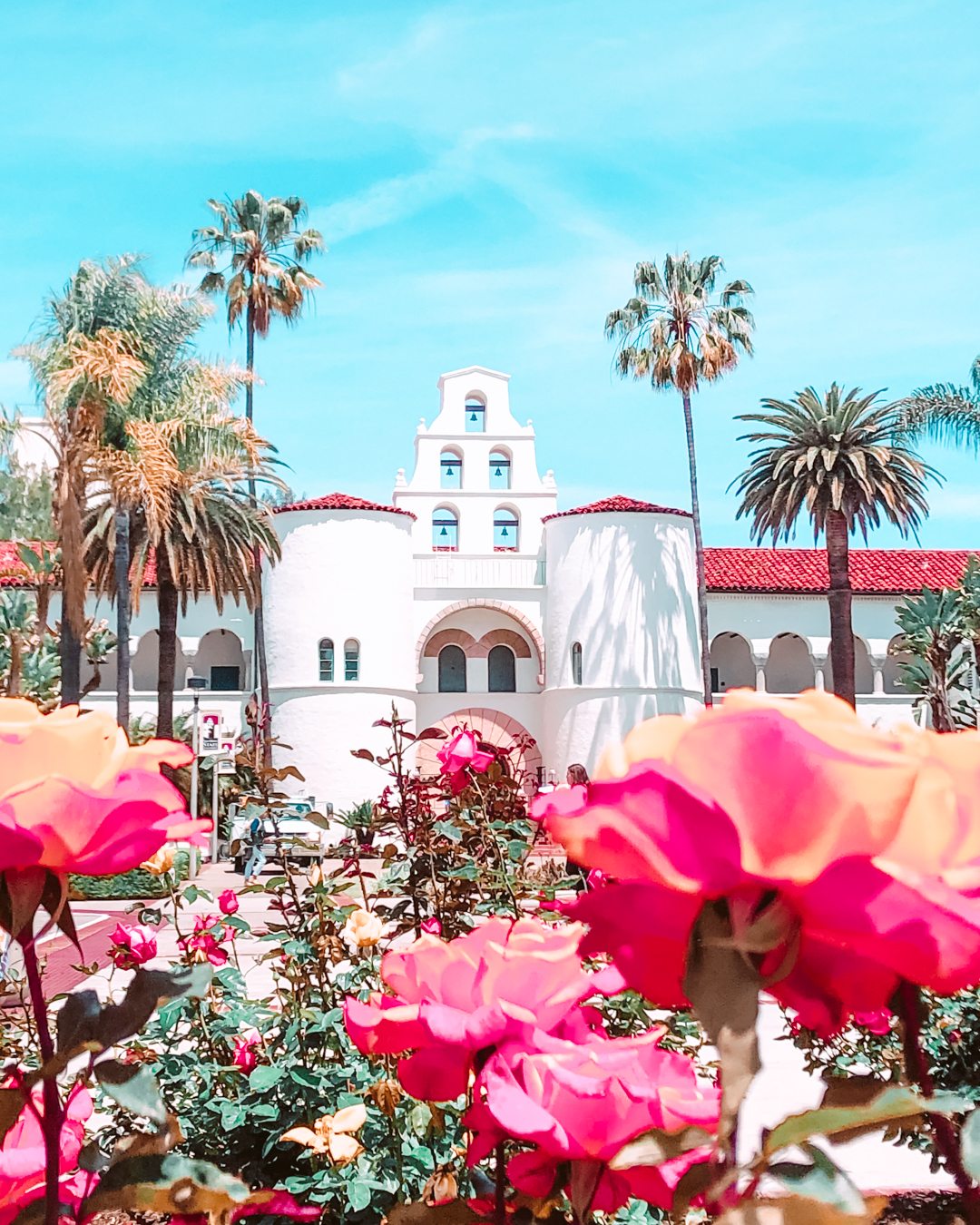Instagrammable flowers and palm trees at University of San Diego