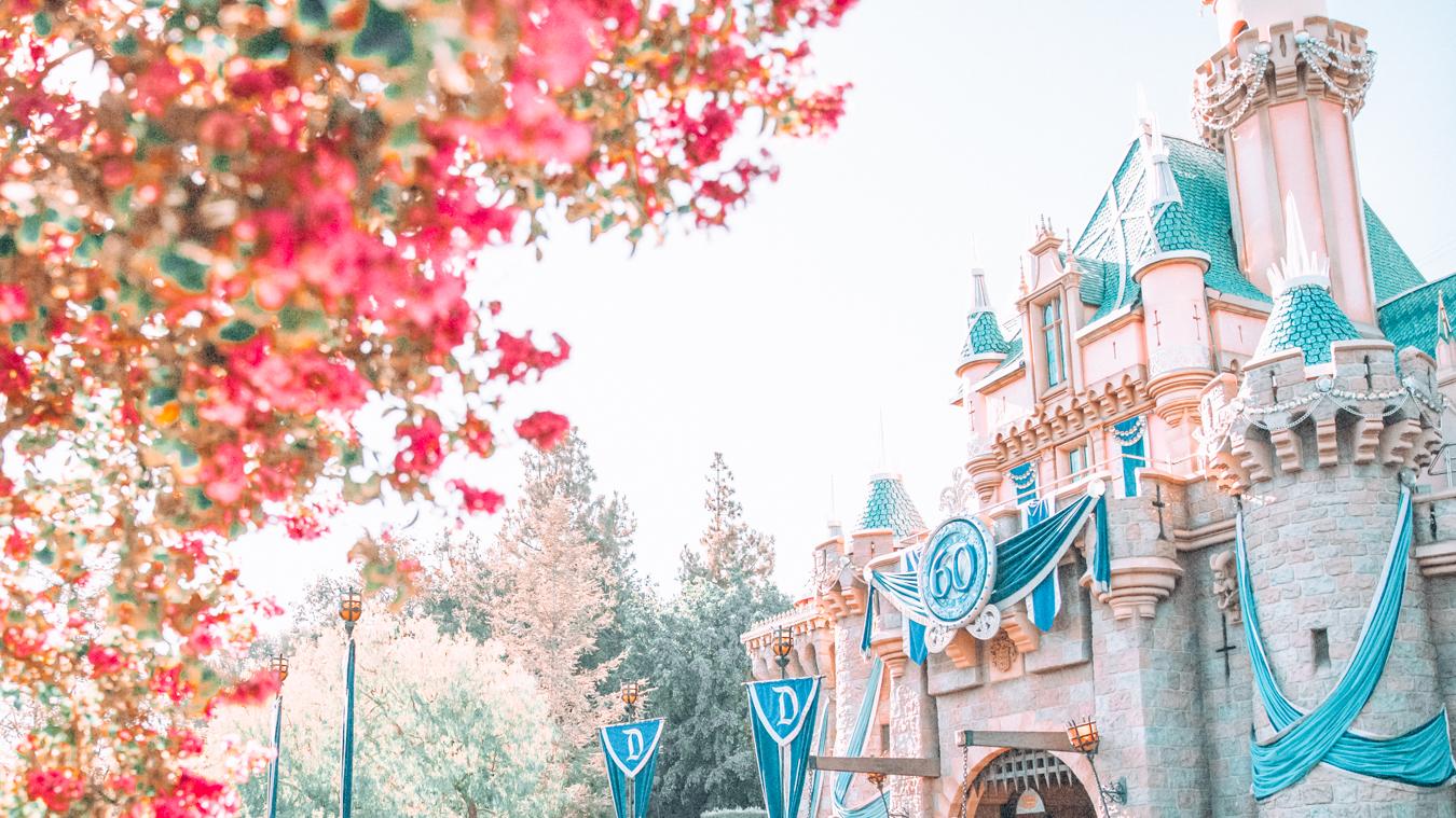 Pink flowers at Disneyland California