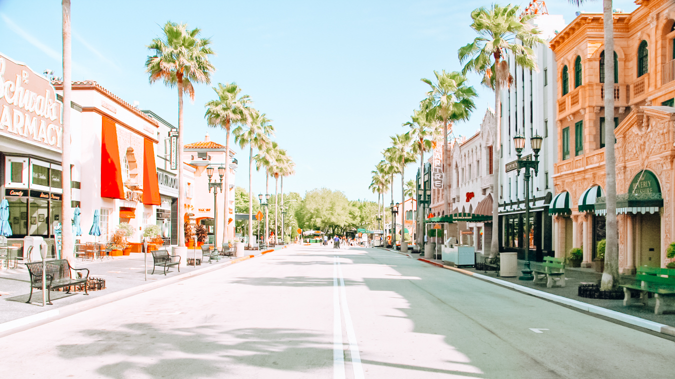 Instagrammable street with palm trees in Orlando