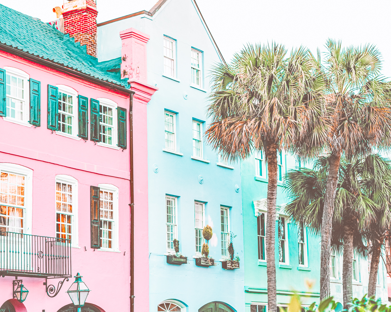 Colorful houses and palm trees in Charleston