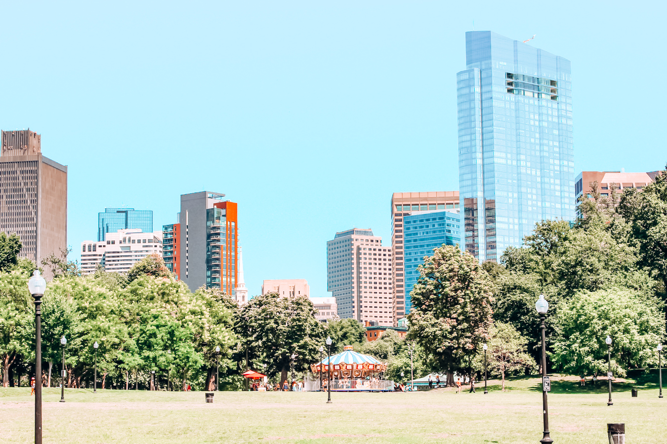 Grass, trees, and buildings in Boston