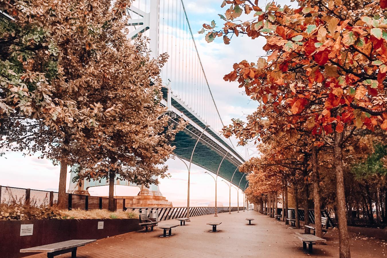 Bridge and nature in Philadelphia