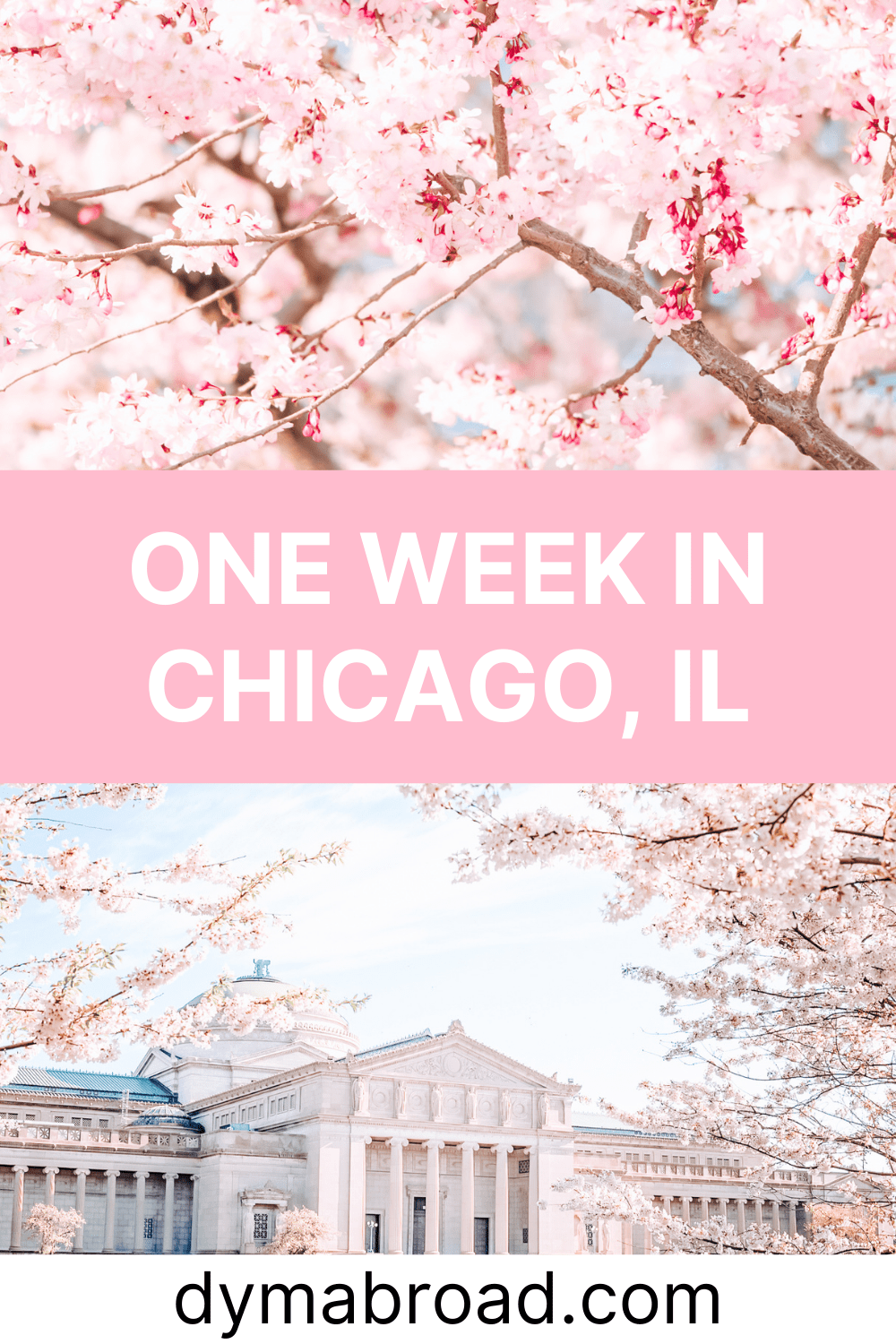 One week in Chicago Pinterest image