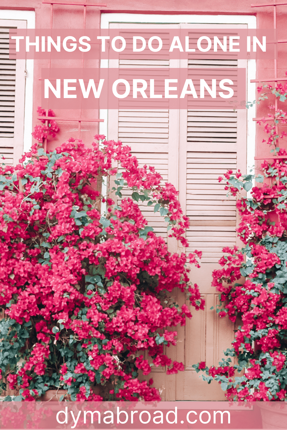Things to do alone in New Orleans Pinterest image
