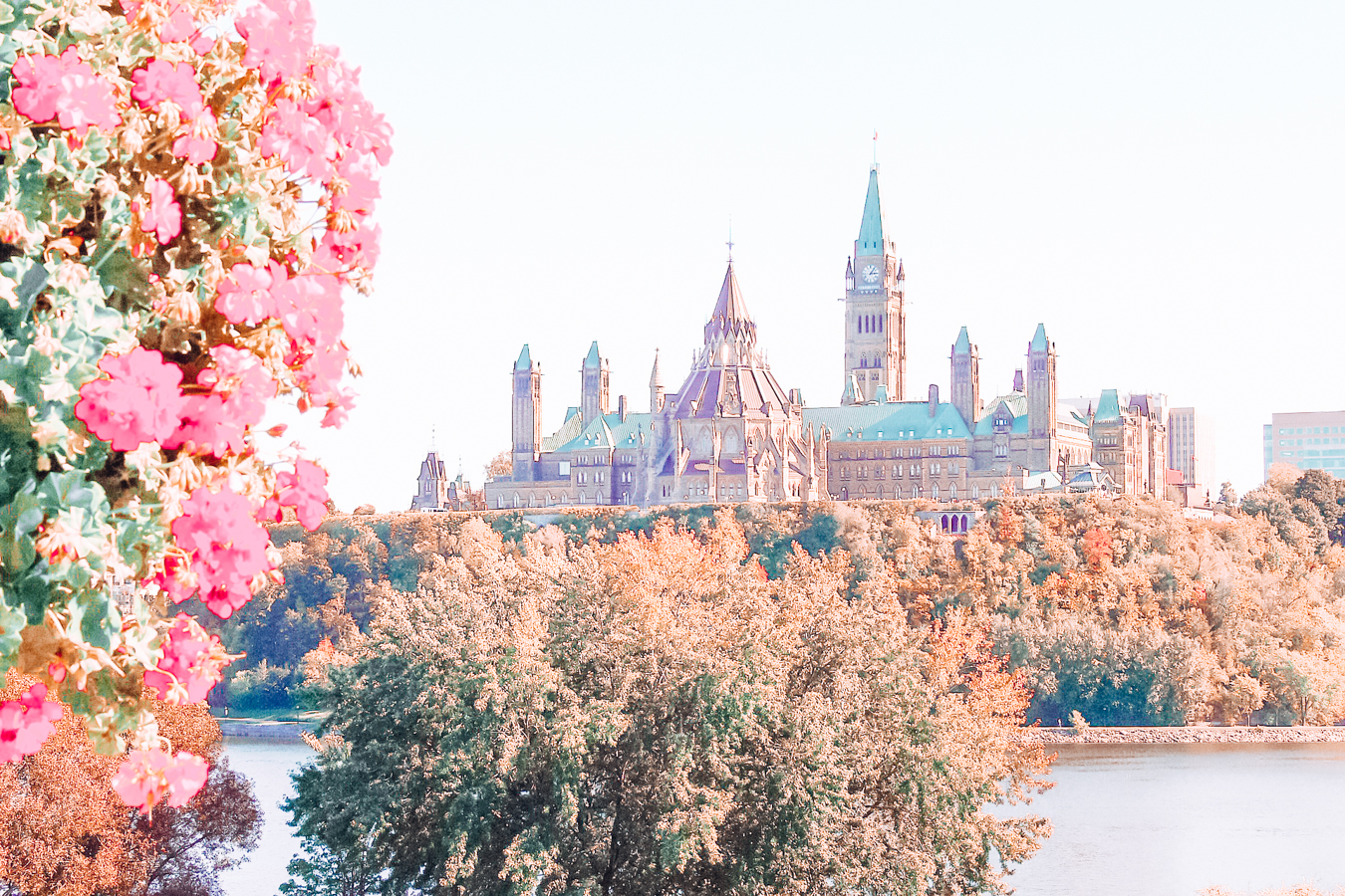 Flowers and the Parliament of Canada
