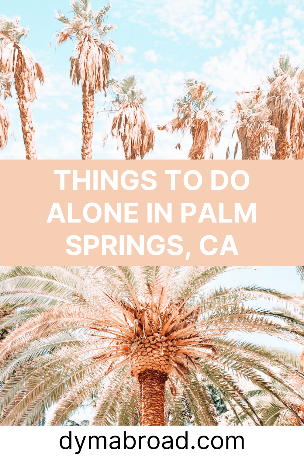 Things to do alone in Palm Springs second Pinterest image