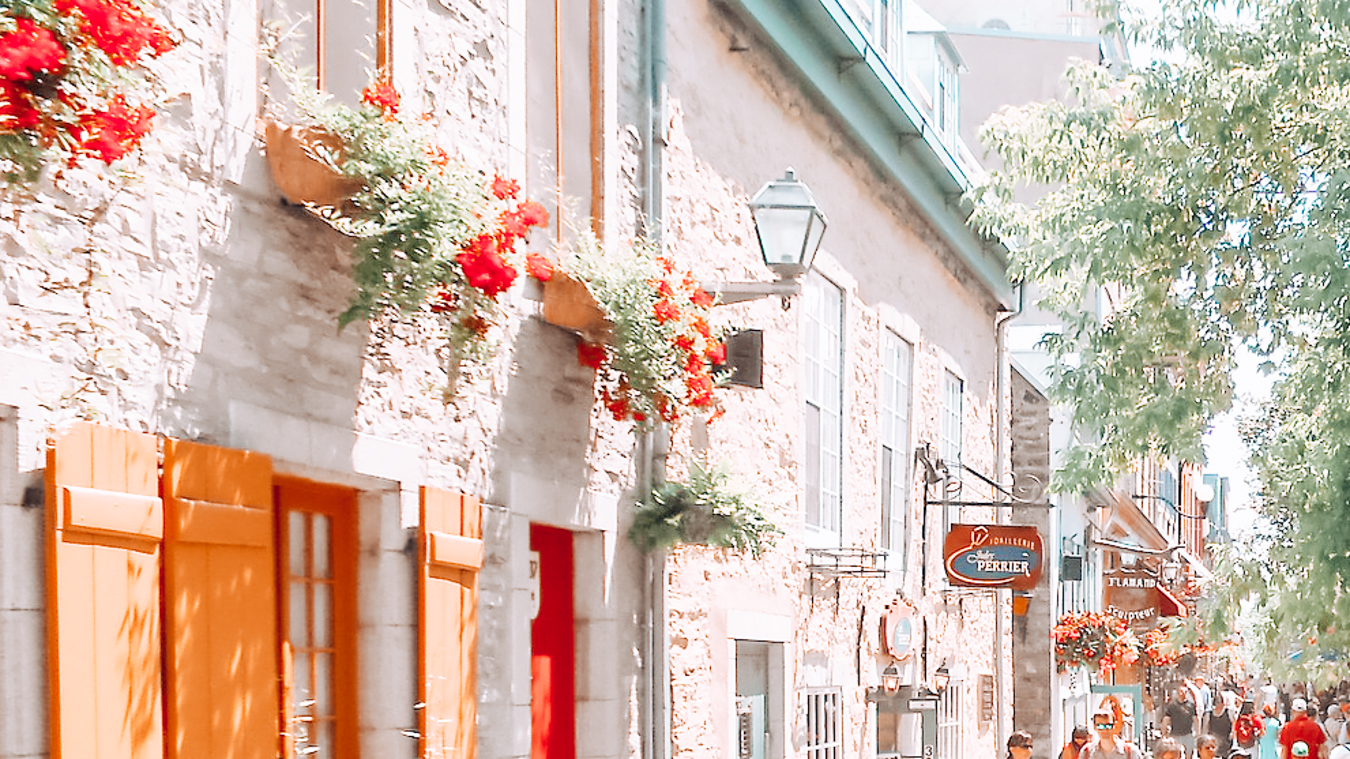 Building with red flowers