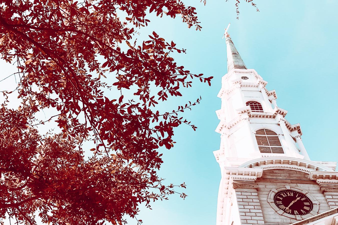 Church and trees in Savannah