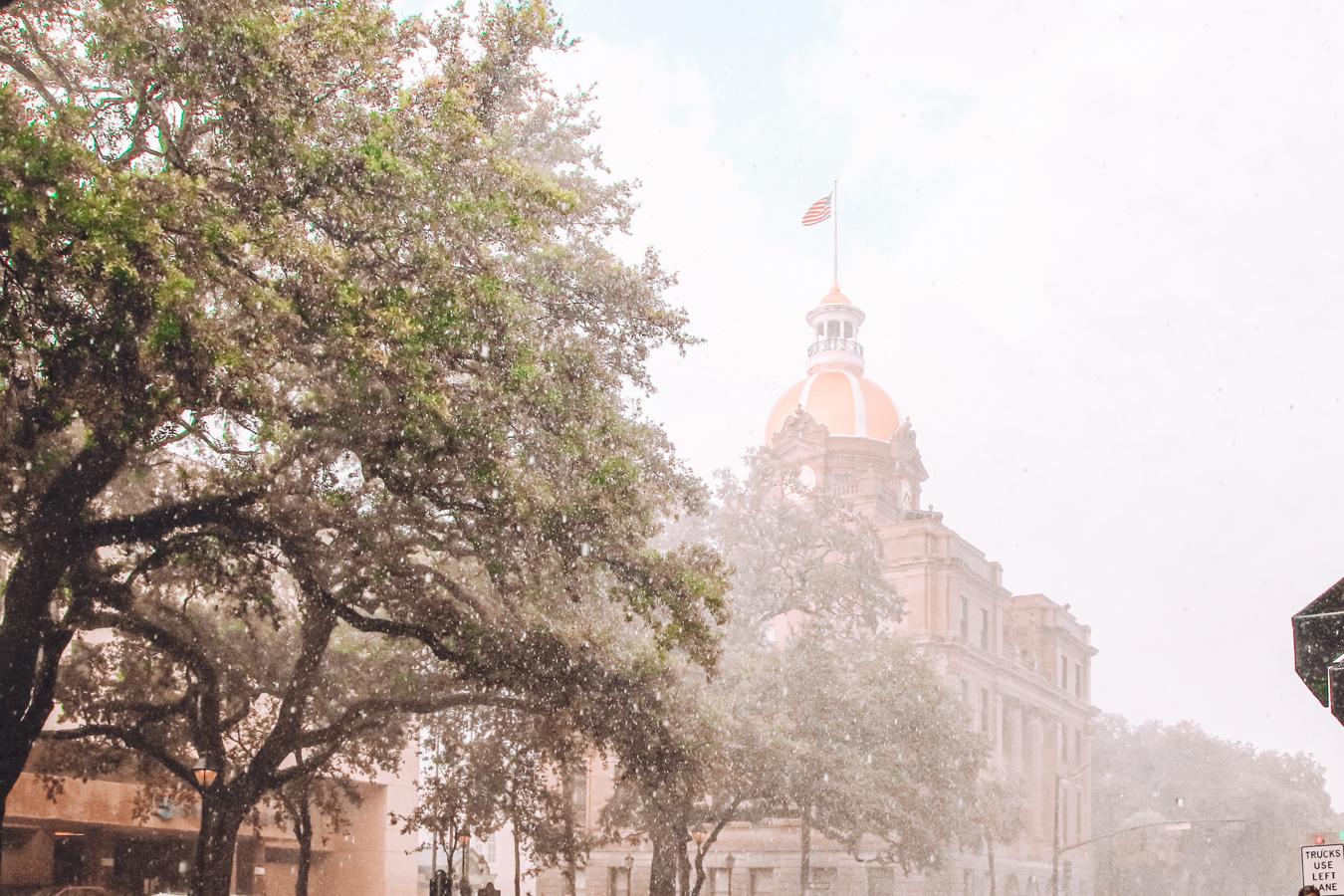 Trees and buildings in Savannah