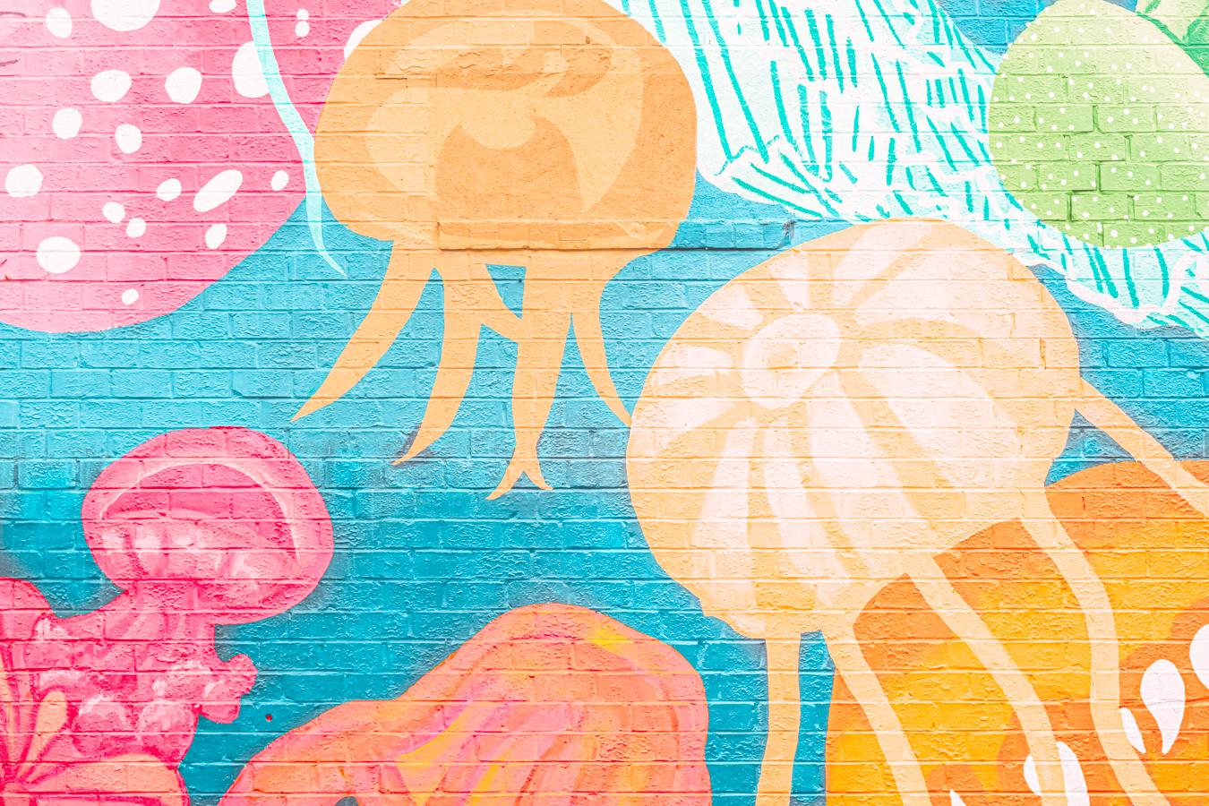 Instagrammable Jellyfish Wall in Jacksonville