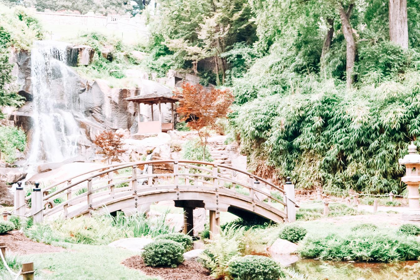 Garden at Maymont
