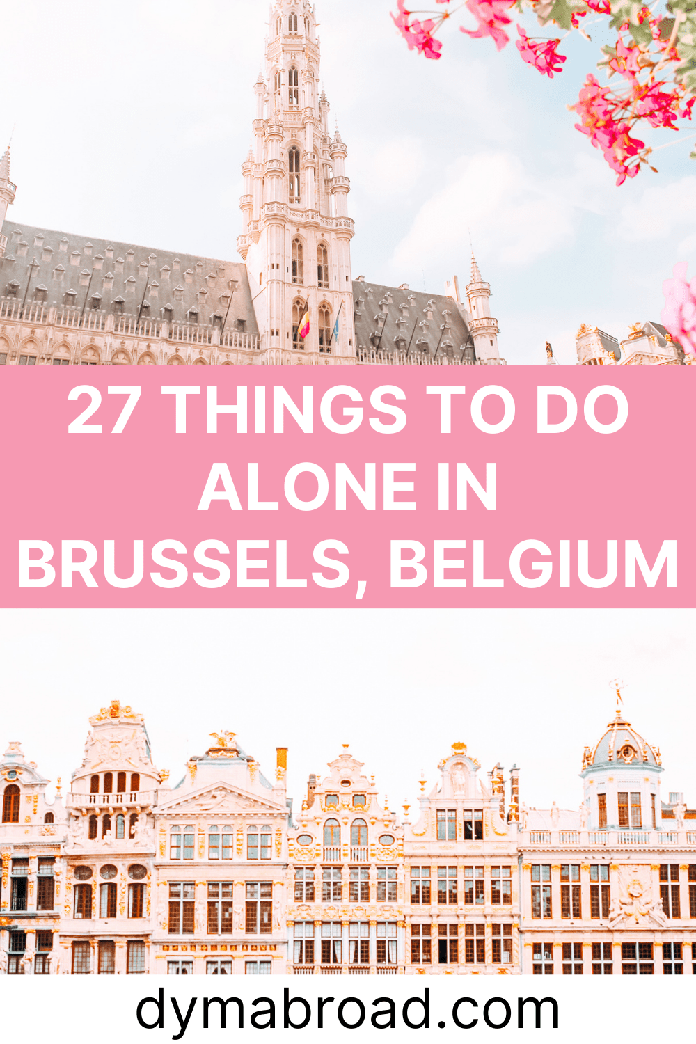 Things to do alone in Brussels Pinterest image