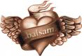 _balsam_logo_png