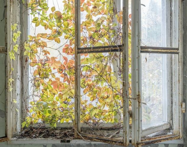 chernobyl david mcmillan 13