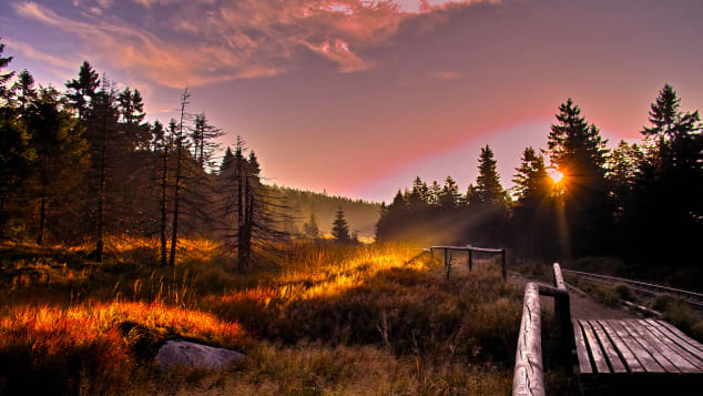 06 harz national park germany places photos