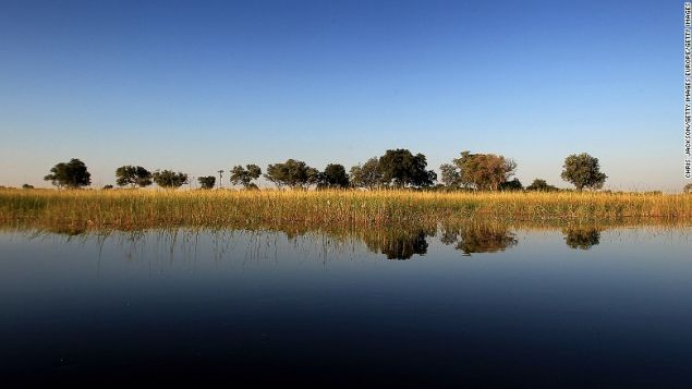 The Okavango Delta is the world's largest inland delta and home to an array of wildlife.