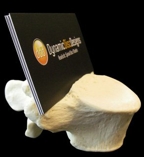 L5 business card holder for spine specialists