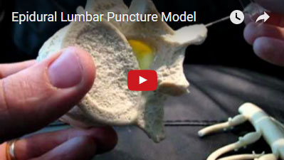 Lumbar Epidural Trainer Youtube