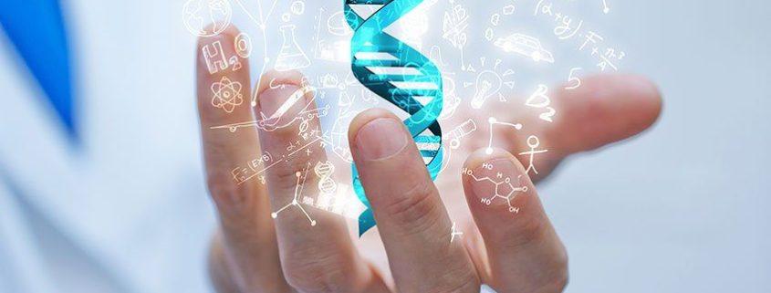 Role of Genetics in IVD Degeneration