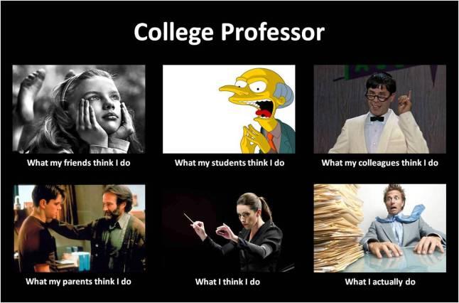 Professorsdomeme
