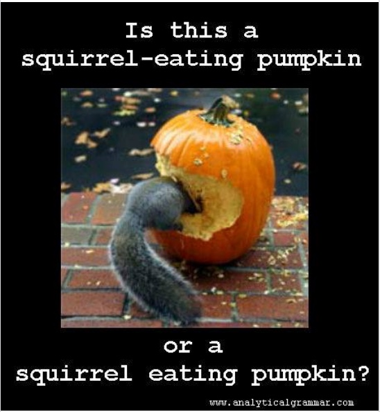 SquirrelPumpkin