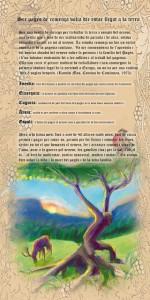 REMENÇA5-2