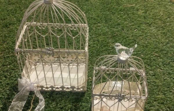 Cream Birdcages
