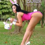 Kristal Solis: Exotic Easter Bunny - courtesy of Chris McBrown